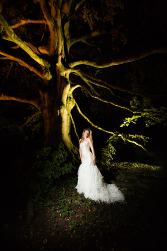 Canon 5D, ISO 1250, f/3.5, 1/15th second. By the time I took this picture it was dark and diffucult to focus. The STE2 transmitter I used to trigger the flash has a very useful focus aid light built in. This is one of the key factors why I use it in the dark rather than use my excellent Pocket Wizards. I held the camera over my head and pointed it in the right direction using experience and intuition as my framing guide. The random tree illumination was from some fairly low wattage spotlights set into the ground.