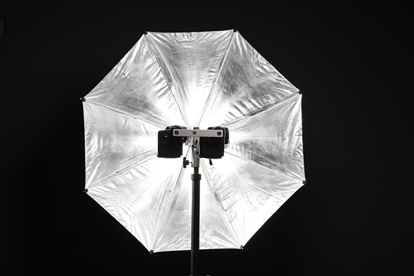 The flash units mounted in Gemini offer the least posable blocking of the light output from the umbrella.