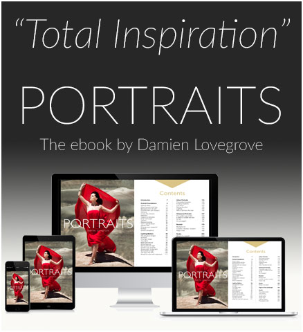 Portraits ebook by Damien Lovegrove